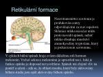 retikul rn formace1