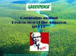 campaign against destruction of the amazon by kfc