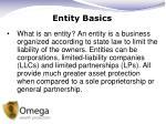 entity basics