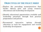objectives of the policy brief