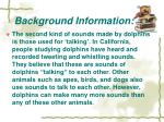 background information2