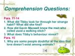 comprehension questions13