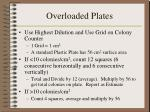 overloaded plates