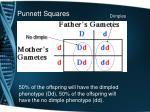 punnett squares4