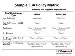 sample sba policy matrix