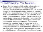 lead poisoning the program