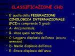 classificazione chd