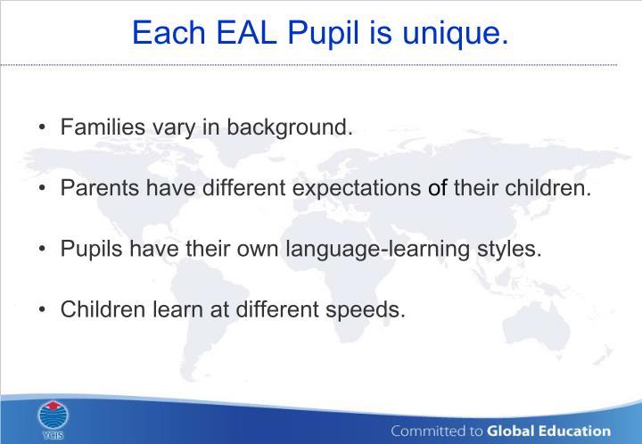 Each EAL Pupil is unique.