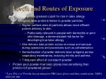 levels and routes of exposure