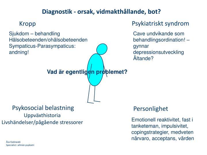 Diagnostik - orsak, vidmakthållande, bot?