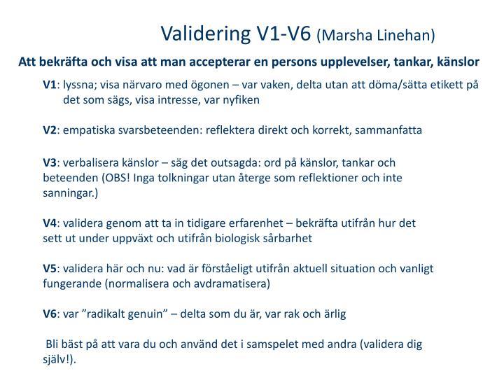 Validering V1-V6