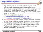 why feedback systems