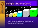 exemple homo sapiens