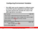 configuring environment variables1