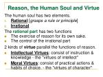 reason the human soul and virtue