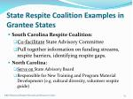 state respite coalition examples in grantee states