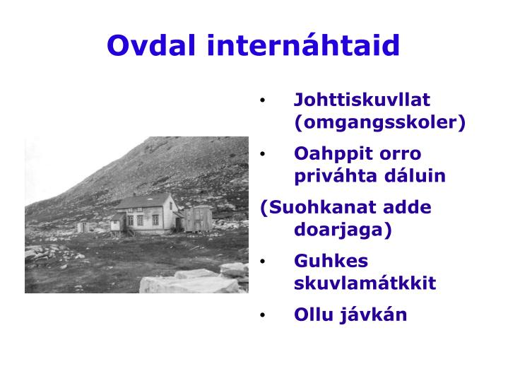 ovdal intern htaid n.