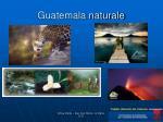 guatemala naturale2
