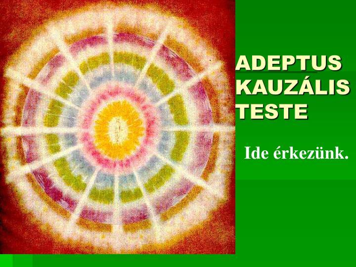 ADEPTUS KAUZÁLIS TESTE