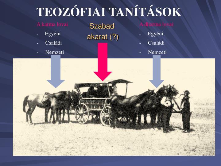 TEOZÓFIAI TANÍTÁSOK