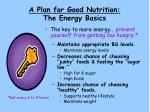 a plan for good nutrition the energy basics