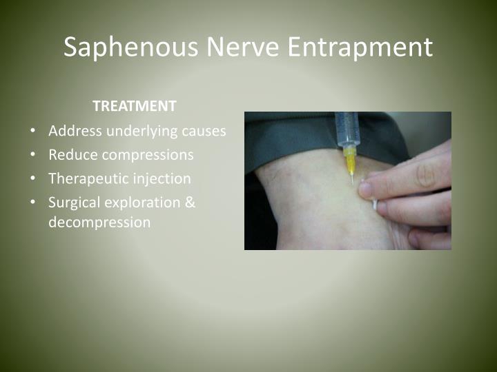 Saphenous