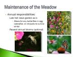 maintenance of the meadow