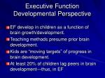executive function developmental perspective