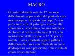 macro1