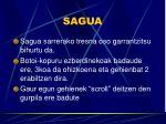 sagua