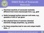 es h risks of nanoscale materials