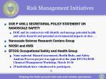 risk management initiatives