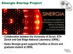 sinergia startup project