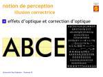 notion de perception illusion correctrice