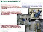 neutron irradiation1