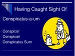 having caught sight of