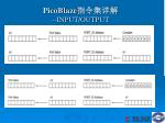 picoblaze input output