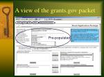 a view of the grants gov packet