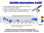 satellite observations icesat
