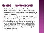 essere morphologie3