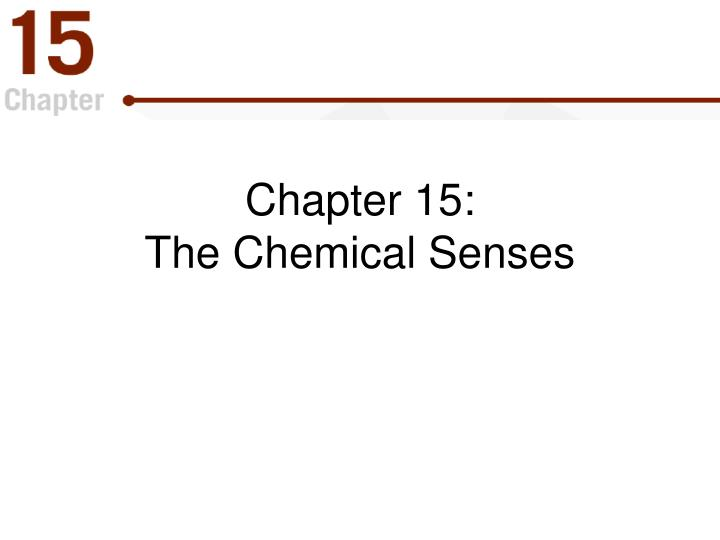 chapter 15 the chemical senses n.