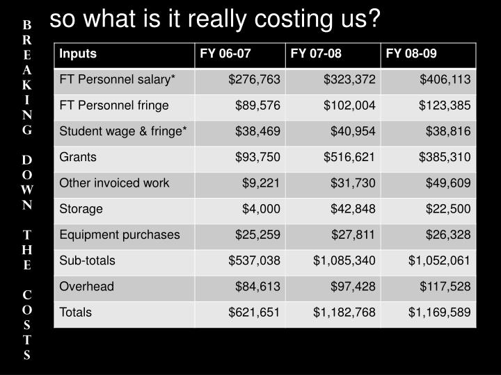 so what is it really costing us?