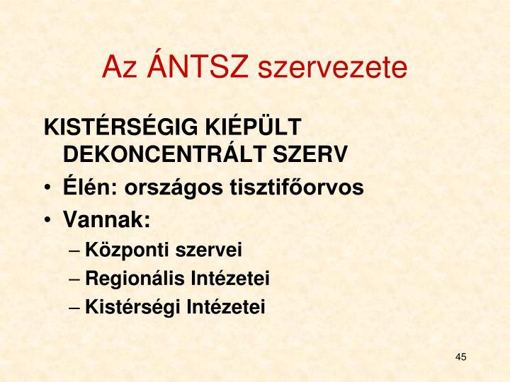 Az ÁNTSZ szervezete