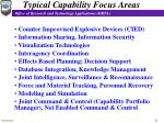 typical capability focus areas