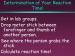 determination of your reaction time