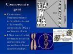 cromosomi e geni