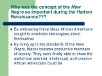 why was the concept of the new negro so important during the harlem renaissance