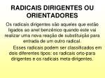 radicais dirigentes ou orientadores