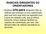radicais dirigentes ou orientadores1