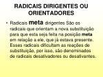 radicais dirigentes ou orientadores3